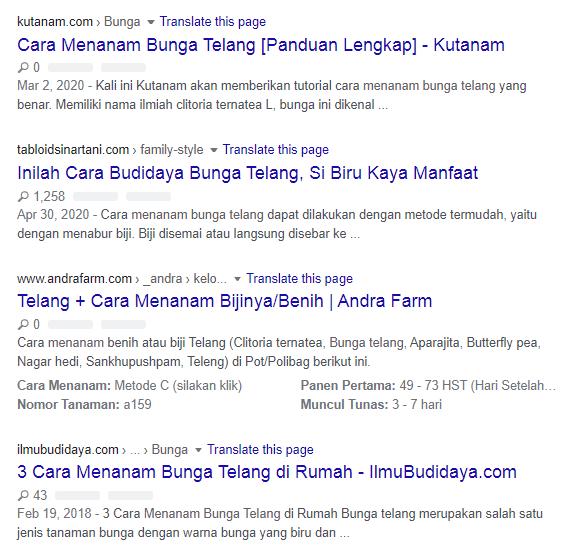 Halaman Pertama Google